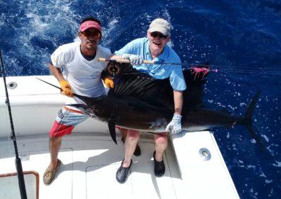 sailfish-on-the-fly